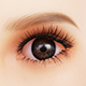 Цвет глаз DL Коричневый