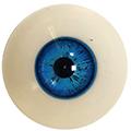 Couleur des yeux FG Blue