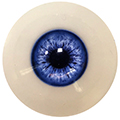 Eye Color FG Navy Blue