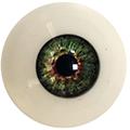 Couleur des yeux FG Green