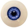 Couleur des yeux FG bleu marine