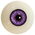Couleur des yeux FG Violet