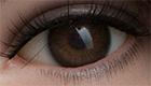 Augenfarbe RZR Braun